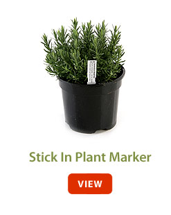 Stick In Plant Marker